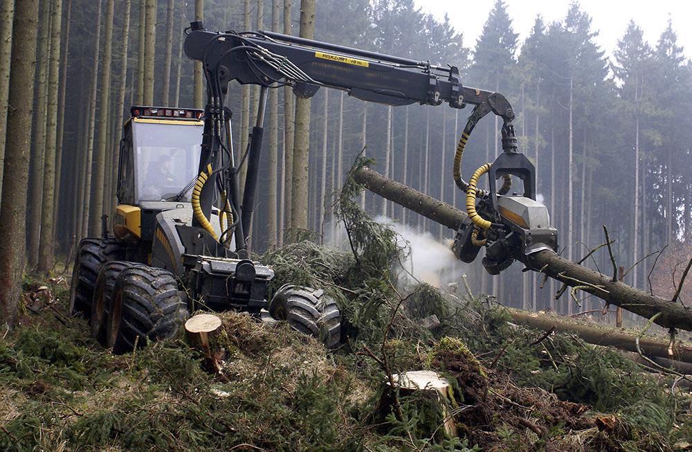 logging v-belts